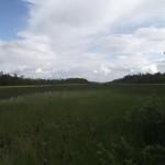 ПильдОзеро