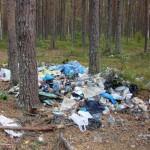горы мусора на реке Воньга