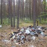 свалка мусора на АССУ