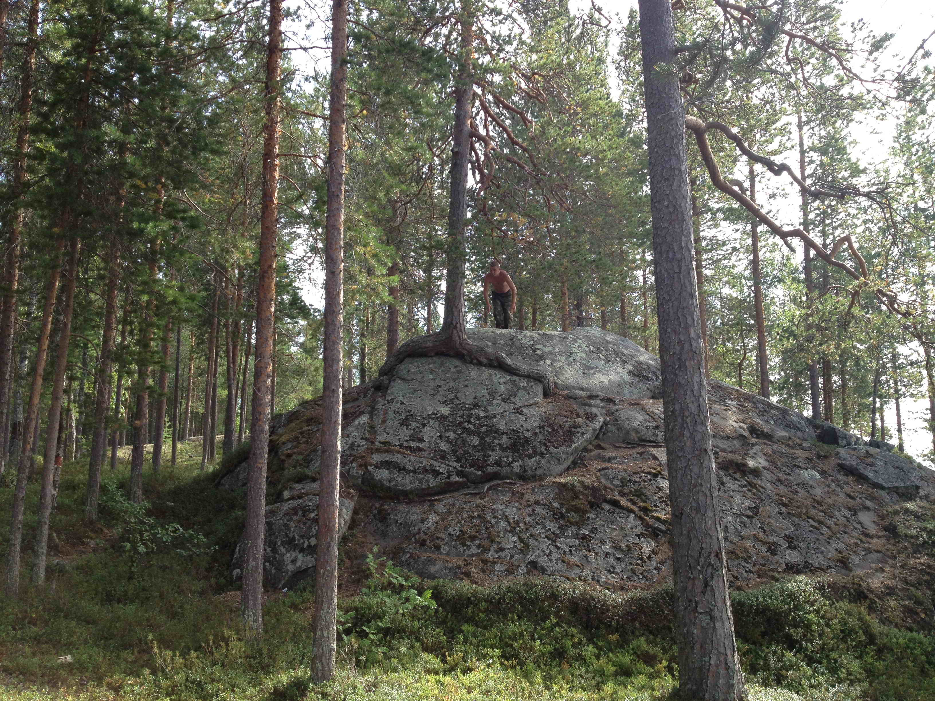 скалы острова Каменный